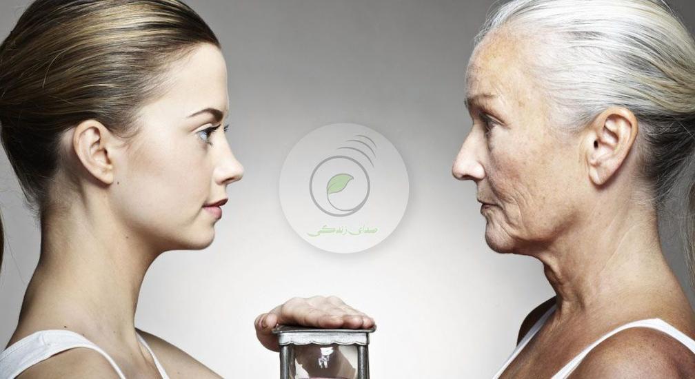 英富豪赞助药品公司用人工智能寻找抗衰老捷径