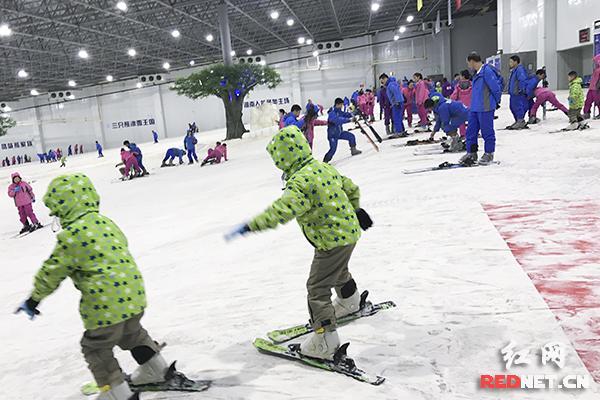 高温天火了滑雪经济 冰火两重天引游客流连