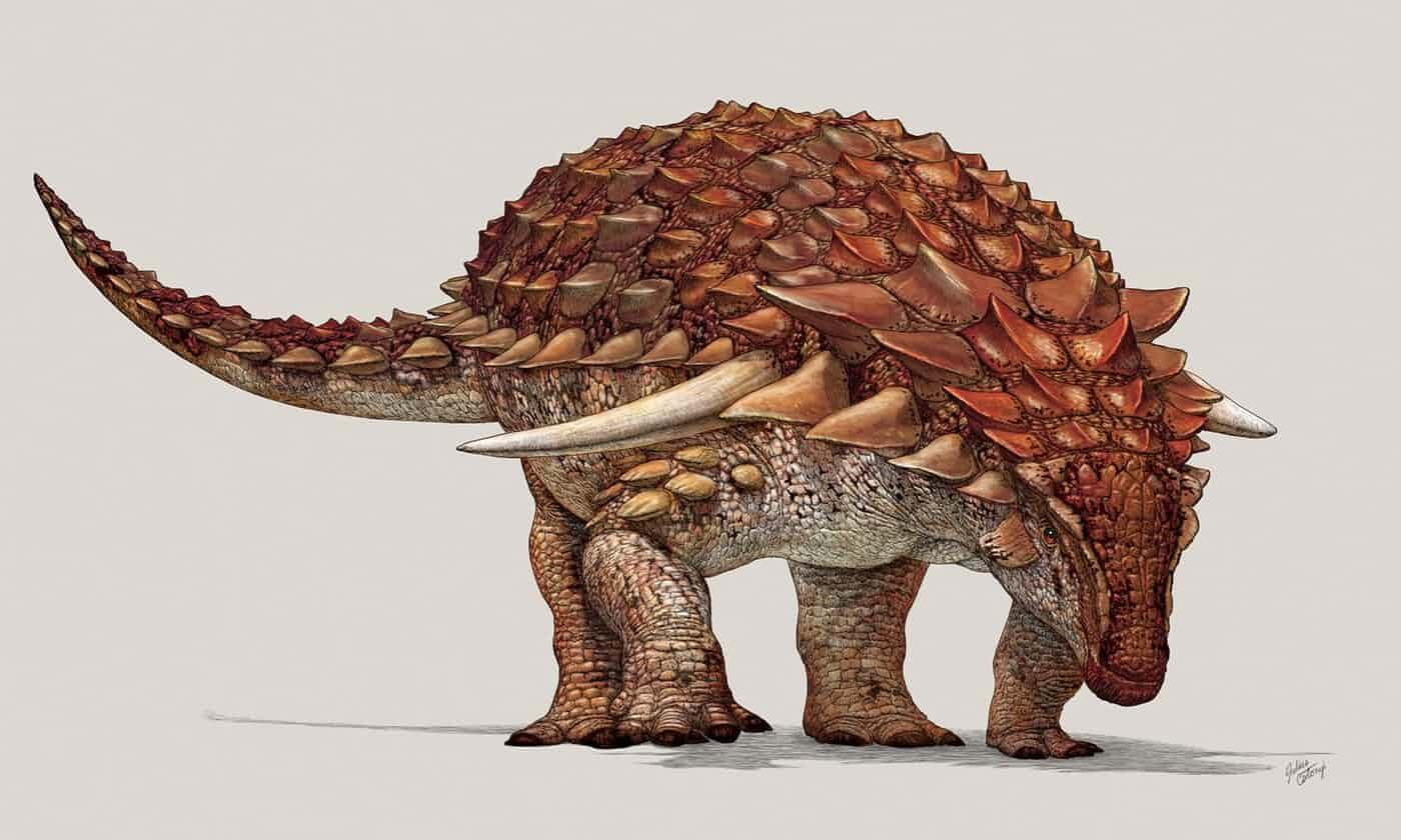 加拿大展出1.1亿年前恐龙化石 身体或有伪装色