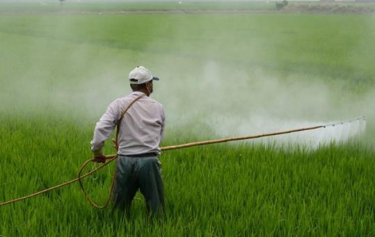 herbicide-587589_1280-980x620.jpg