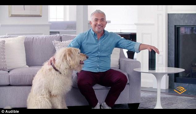 亚马逊为狗狗研发可以听的书 能让它们保持冷静