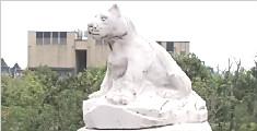 杭州金鸡大桥汉白玉石雕 一夜被人砸掉十一个