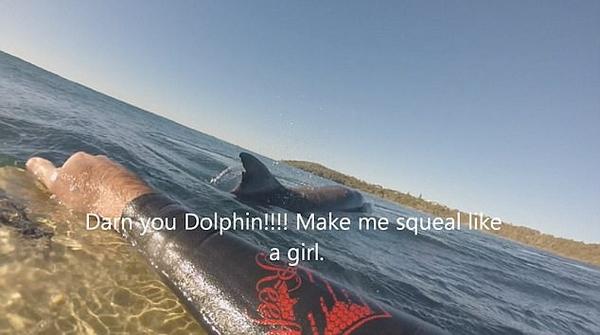 澳男子冲浪错把海豚当鲨鱼惊声尖叫后自嘲
