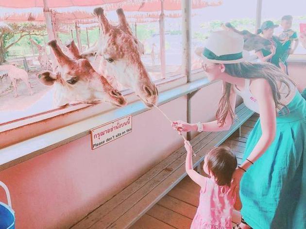 昆凌带小周周逛动物园 母女喂长颈鹿画面有爱