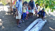 菲律宾4米长皇带鱼被冲上海滩