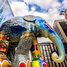 """2017年8月1日,巴西圣保罗举办""""大象游行""""。"""