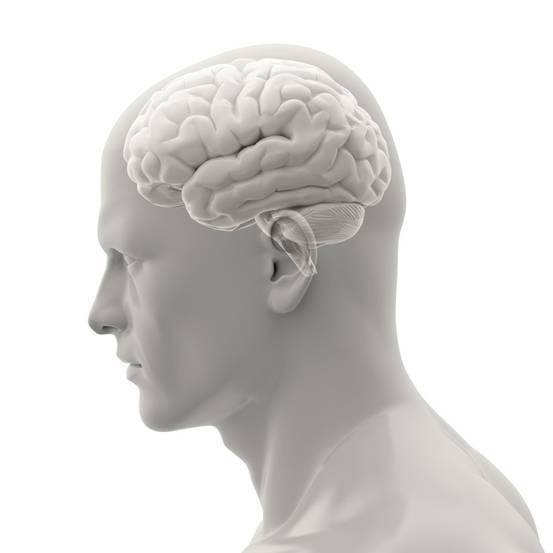 """研究:大脑会对熟悉面孔""""另眼相看"""""""