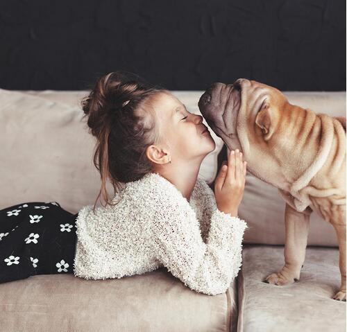 比亲人更要好!法媒解读儿童与宠物间的亲密关系