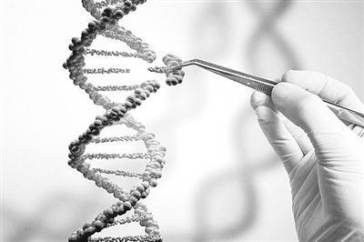 美国用基因编辑技术修正人类胚胎