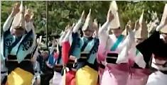 """日本德岛""""阿波舞节"""" 男女老幼舞动街头"""