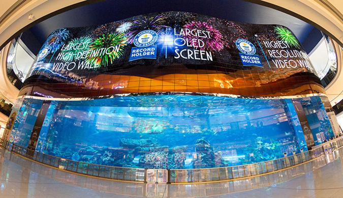 700平方米!LG迪拜设立全球最大OLED显示屏