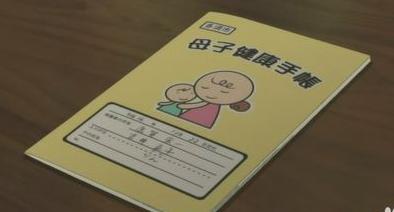 江西建立统一电子化母子手册