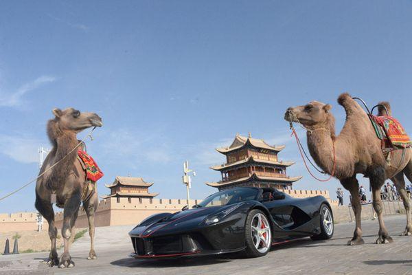 重征河西走廊!骆驼与法拉利嘉峪关争奇斗艳