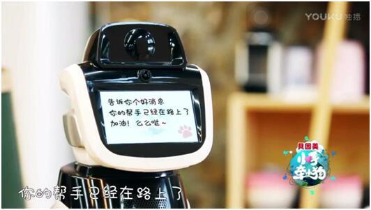 """《小手牵小狗》:小猪助手机器人旺宝""""实力""""圈粉"""