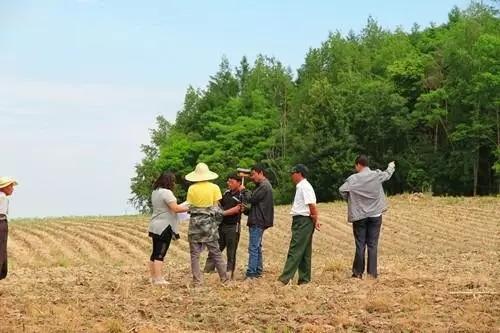 【土地确权】无人机是怎样精确测量土地面积的?