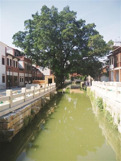 穿越千年醉在宋河 漳州古城推进护城河景观改造