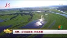 虎林:珍宝岛湿地 风光旖旎