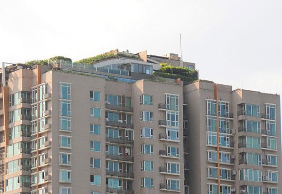 北京最牛违建楼顶又见绿色 房主:只是绿化