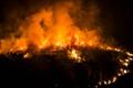 意大利泰拉奇纳森林野火肆虐