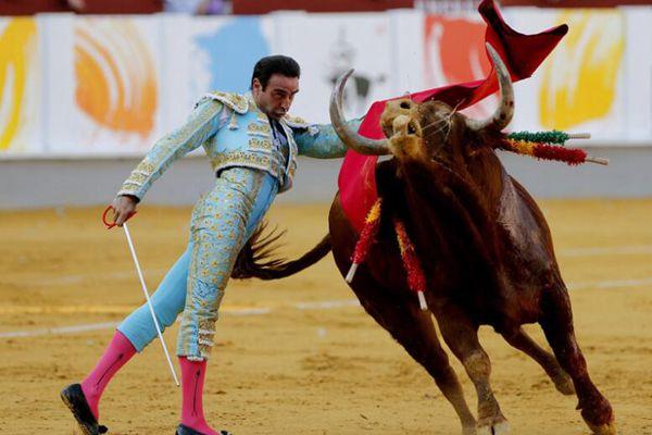 """西班牙马拉加举行斗牛赛 斗牛士与公牛优雅""""尬舞"""""""