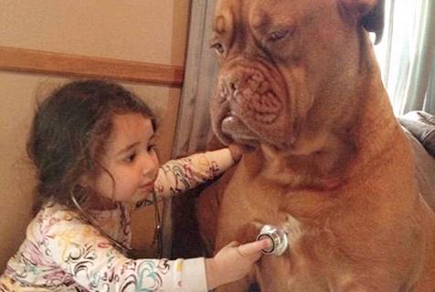 狗狗是宝宝最好的朋友
