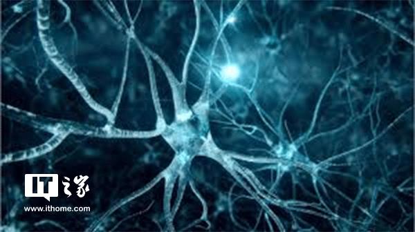 科学家远程入侵大脑 控制机体运动