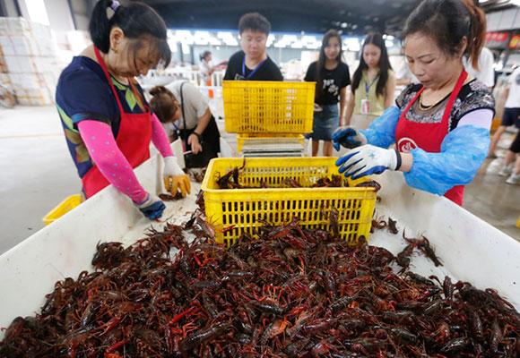 小龙虾要断货了?食客络绎不绝 老板疯抢货源