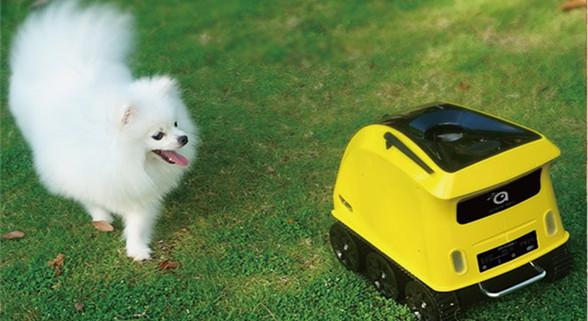 爱宠人士必备:这款机器人专为宠物狗而设计