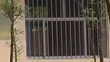 男老师酒后传达室强奸10岁女学生 屋内残留血迹