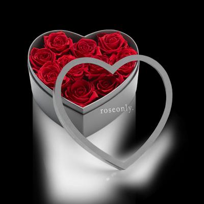 roseonly『全世爱』永生玫瑰图片