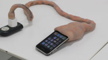 这根手机充电线太可怕了!长得像一根脐带