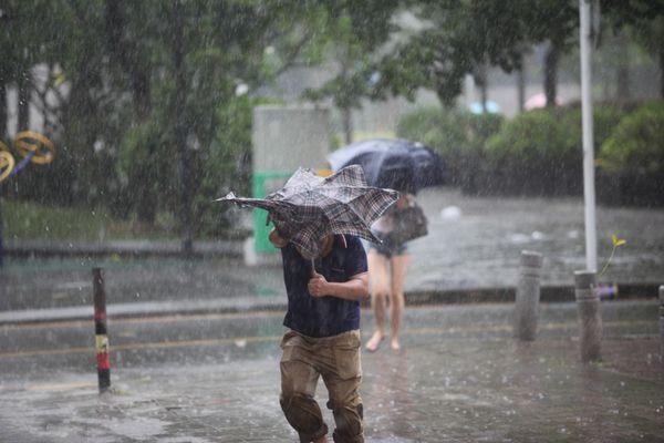 """""""天鸽""""珠海登陆,14级台风到底有多猛?"""