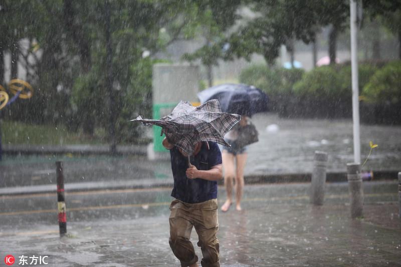 """""""天鸽""""珠海登陆 14级台风到底有多猛?"""