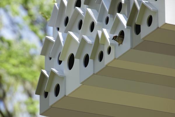 日本建筑公司筑共享树屋