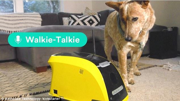 宠物专用机器人问世 用户可手机APP远程控制