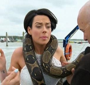 英新人办动物主题婚礼 肩上放蟒蛇吓坏新娘