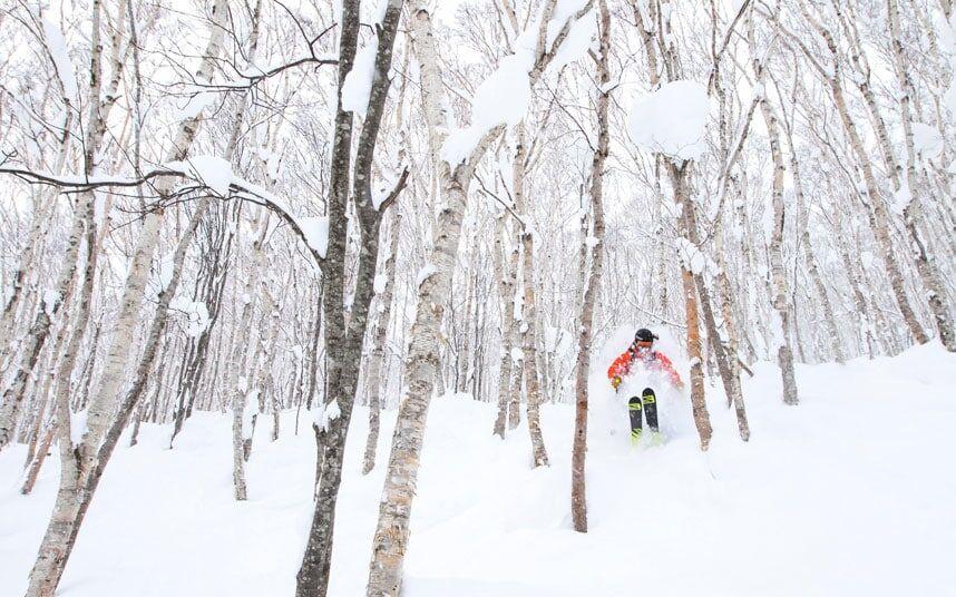 在日本滑雪你要知道的奇葩事