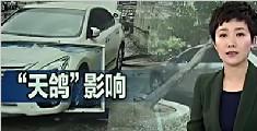 """台风""""天鸽""""已造成16人遇难 风雨影响仍持续"""