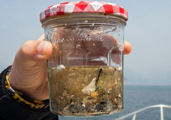 """鱼吃塑料人吃鱼 绕了一圈人类""""自食其果""""?"""