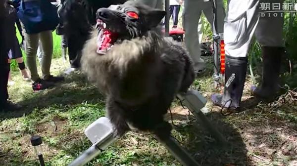 日本农民用机器人怪兽看庄稼 模样吓哭网友