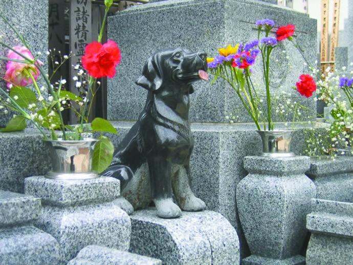 与宠物同葬 日本新时尚