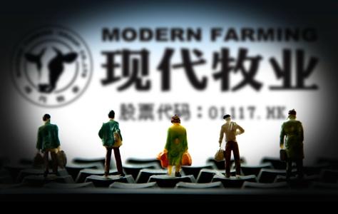 现代牧业迷失终端 :产品下架或与蒙牛有关 关系暧昧
