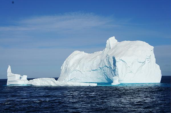 科学家南极发现罕见微生物:为病毒起源提供线索