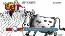 南宁查获60多吨走私牛肉 不少已经变黑发臭!