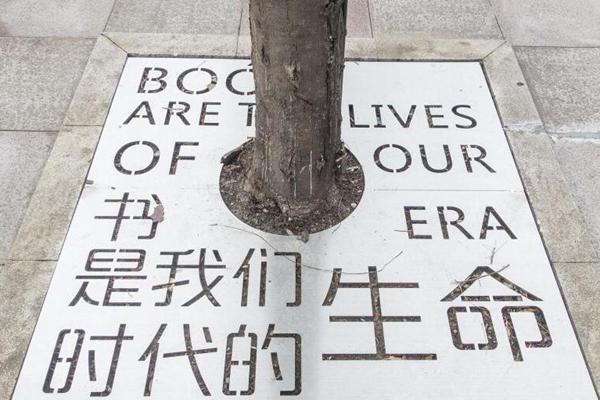 成都行道树变身推广阅读书籍