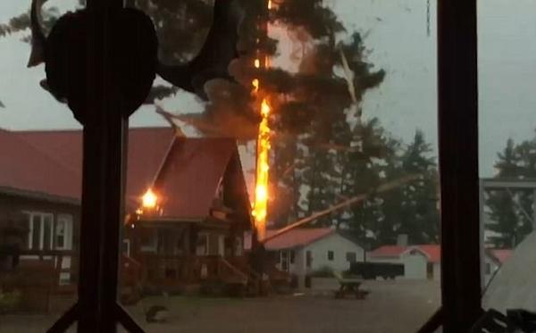 加拿大旅馆旁大树被闪电击断 险砸毁房屋