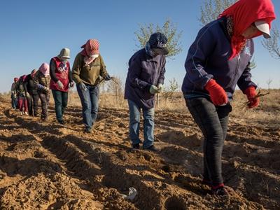村民、牧民们当起了生态工人