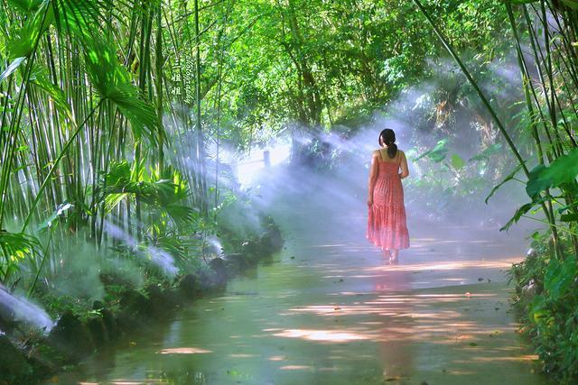秘境呀诺达 不去看绿色的海洋别说你来过海南
