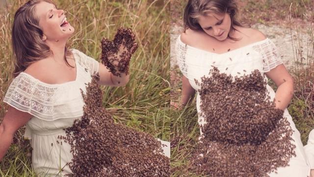 新奇!美国养蜂女子与2万只蜜蜂一起拍摄孕照