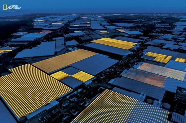 荷兰成世界第二大食品出口国背后:依靠高科技